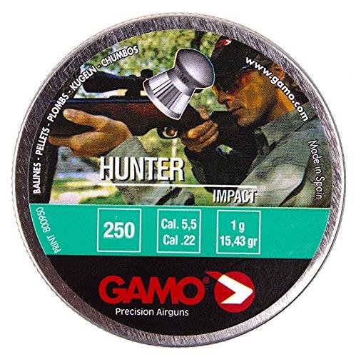 Gamo Hunter .22 (5.5mm)