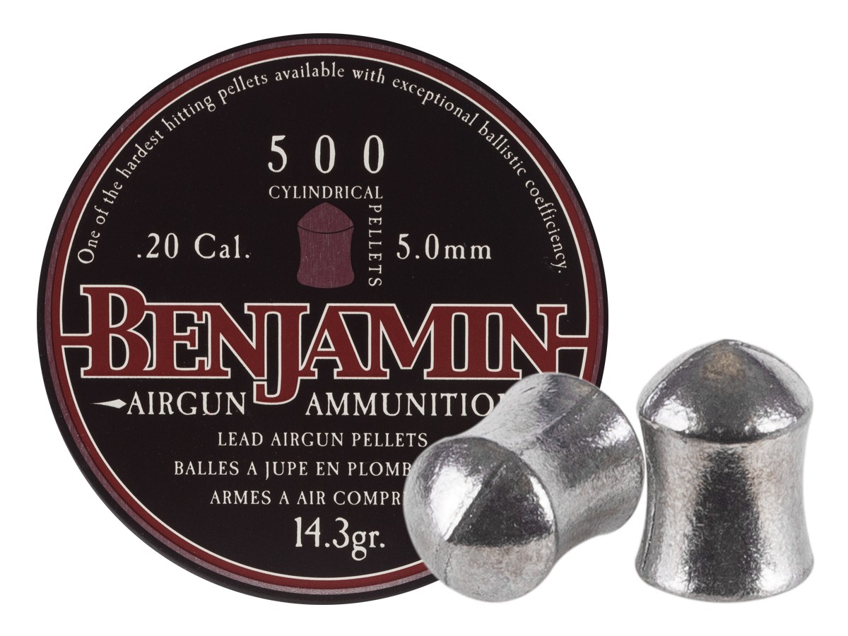 Benjamin Airguns Cylindrical .20 (5mm)